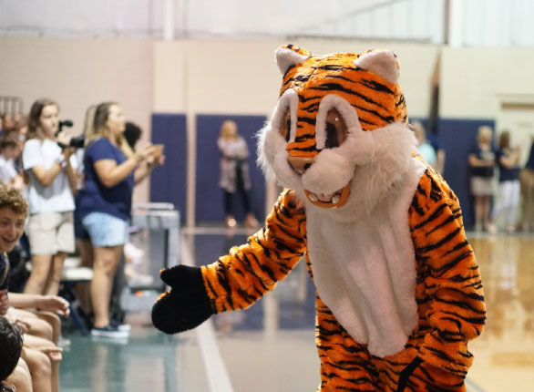 Freshman Dylan Johnson greets students dressed as the Tiger mascot.