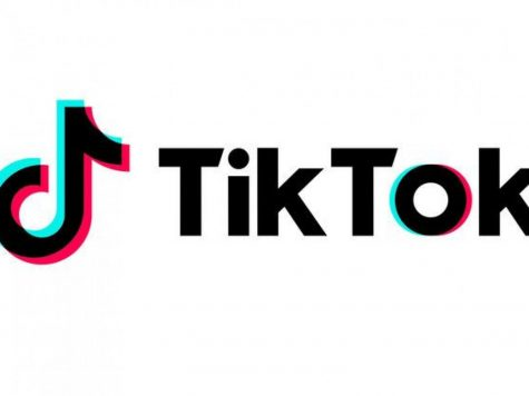 "The app ""Tik Tok"" has gained over 500 million active users since 2016."