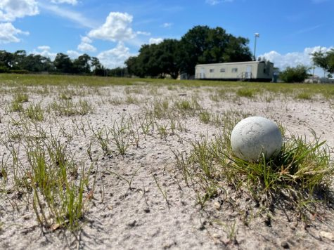 More updates planned for athletic facilities